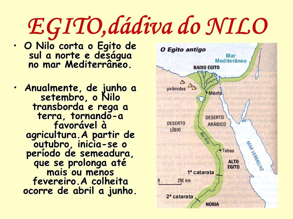 EGITO,dádiva do NILO O Nilo corta o Egito de sul a norte e deságua no mar Mediterrâneo.O Nilo corta o Egito de sul a norte e deságua no mar Mediterrân
