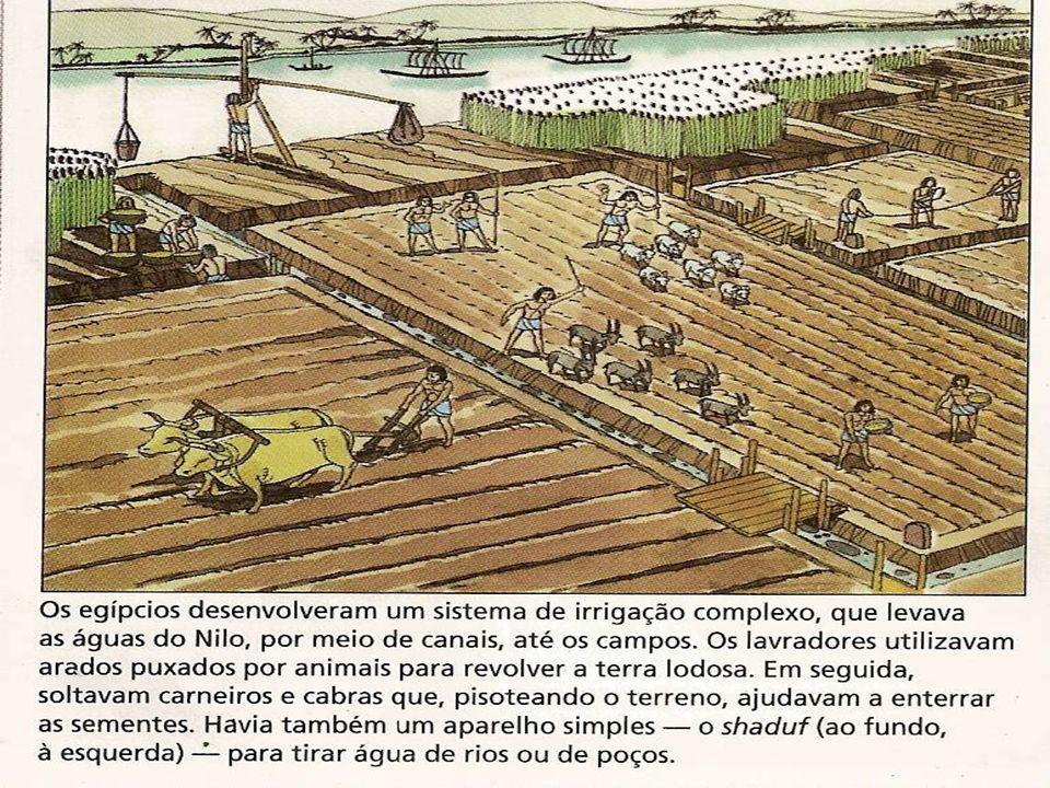 ORGANIZAÇÃO ECONÔMICA A agricultura era a base da economia egípcia e, como já vimos, dependia das águas do Nilo.O trigo, a cevada, os legumes e as uvas constituíam as principais culturas.A agricultura era a base da economia egípcia e, como já vimos, dependia das águas do Nilo.O trigo, a cevada, os legumes e as uvas constituíam as principais culturas.