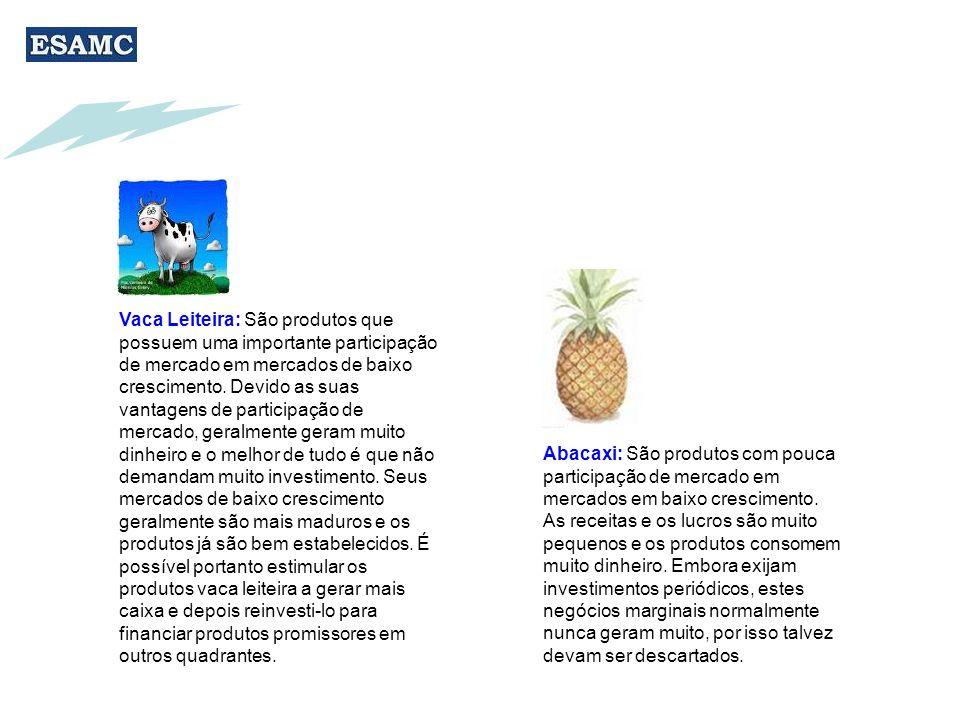 Vaca Leiteira: São produtos que possuem uma importante participação de mercado em mercados de baixo crescimento.
