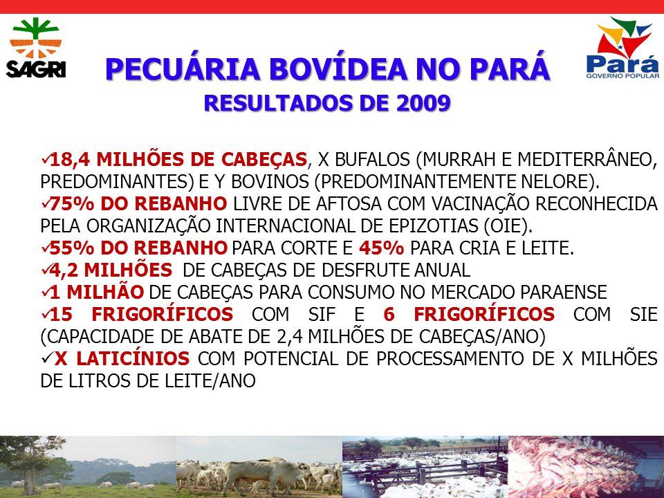 FRUTICULTURA PARAENSE RESULTADOS DE 2009