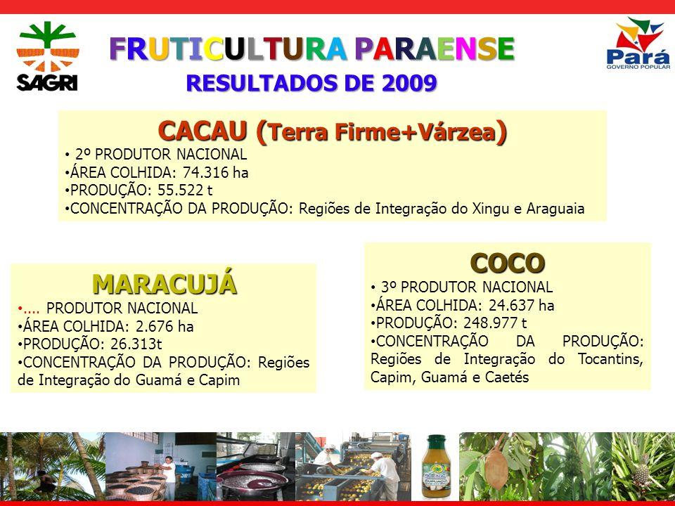 FRUTICULTURA PARAENSE RESULTADOS DE 2009 CACAU ( Terra Firme+Várzea ) 2º PRODUTOR NACIONAL ÁREA COLHIDA: 74.316 ha PRODUÇÃO: 55.522 t CONCENTRAÇÃO DA PRODUÇÃO: Regiões de Integração do Xingu e Araguaia COCO 3º PRODUTOR NACIONAL ÁREA COLHIDA: 24.637 ha PRODUÇÃO: 248.977 t CONCENTRAÇÃO DA PRODUÇÃO: Regiões de Integração do Tocantins, Capim, Guamá e Caetés MARACUJÁ....