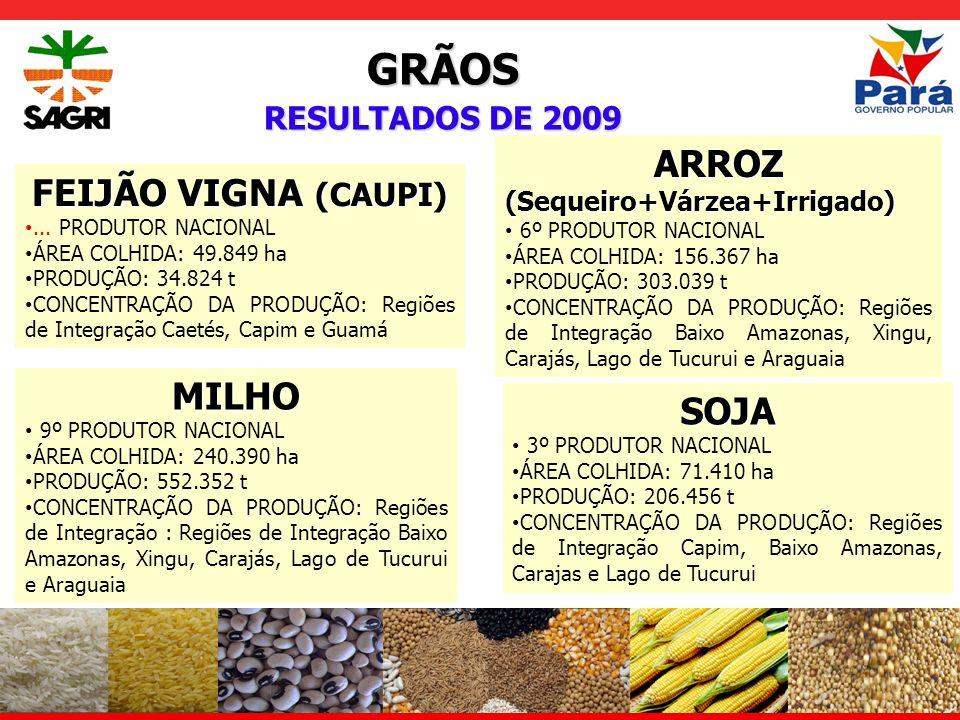 CULTURAS INDÚSTRIAIS RESULTADOS DE 2009 CANA-DE-AÇUCAR 11º PRODUTOR NACIONAL ÁREA COLHIDA: 9.772 ha PRODUÇÃO: 698.805 t CONCENTRAÇÃO DA PRODUÇÃO: Regiões de Integração do Capim, Tapajós e Araguaia DENDÊ...