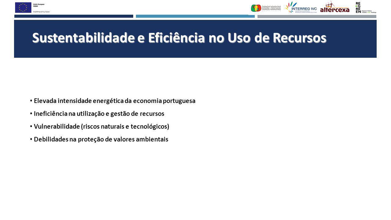 Sustentabilidade e Eficiência no Uso de Recursos Elevada intensidade energética da economia portuguesa Ineficiência na utilização e gestão de recursos Vulnerabilidade (riscos naturais e tecnológicos) Debilidades na proteção de valores ambientais