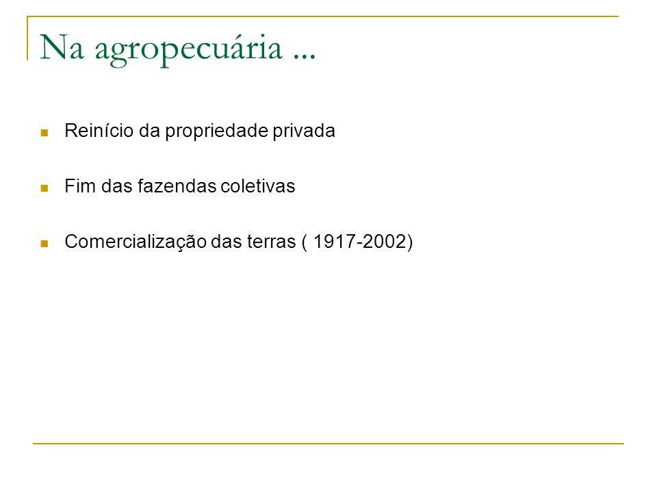 Na agropecuária... Reinício da propriedade privada Fim das fazendas coletivas Comercialização das terras ( 1917-2002)
