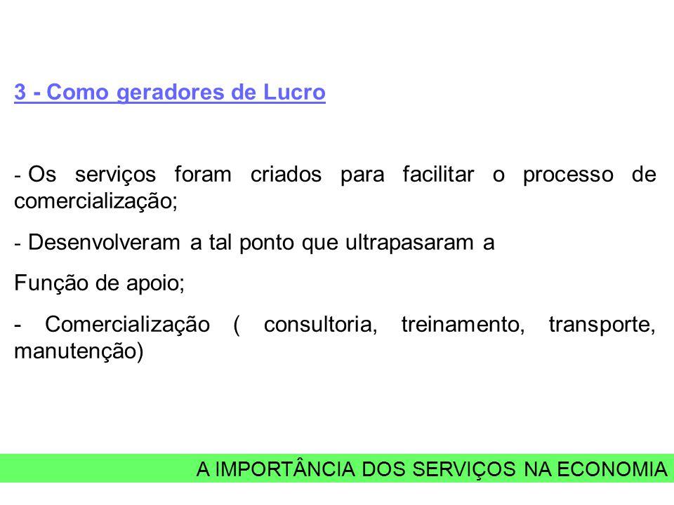 A IMPORTÂNCIA DOS SERVIÇOS NA ECONOMIA 3 - Como geradores de Lucro - Os serviços foram criados para facilitar o processo de comercialização; - Desenvolveram a tal ponto que ultrapasaram a Função de apoio; - Comercialização ( consultoria, treinamento, transporte, manutenção)