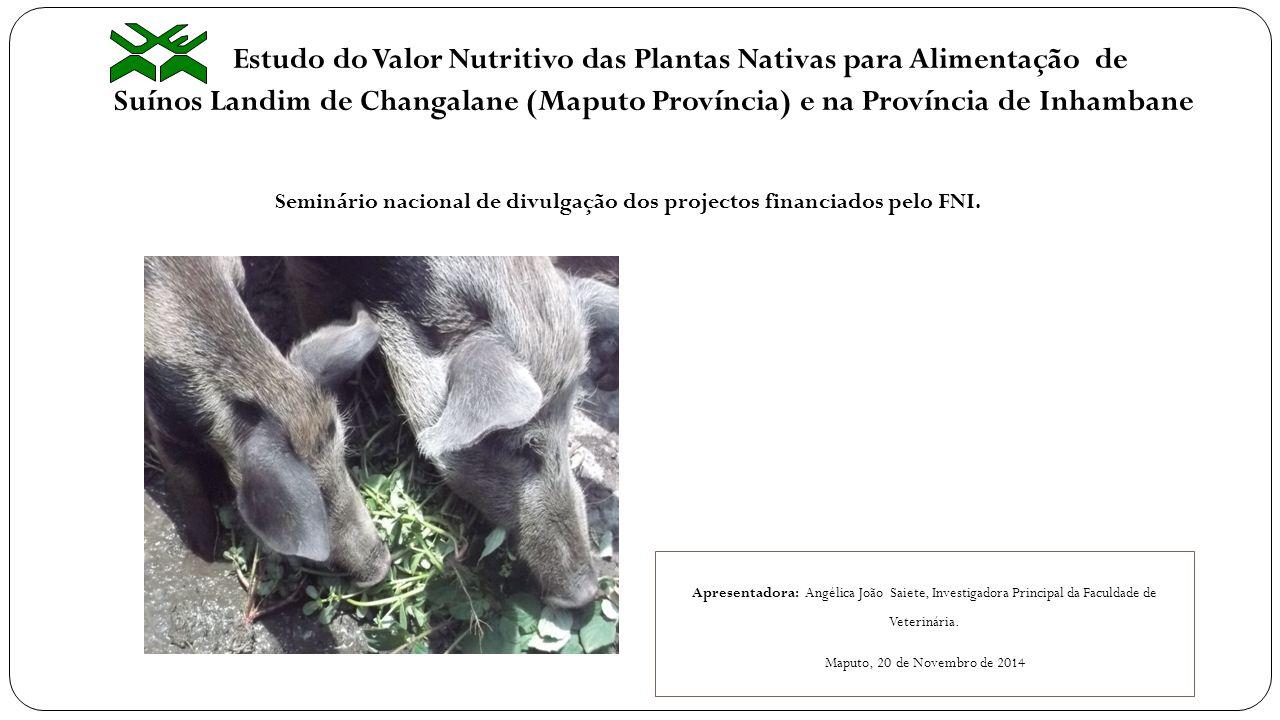 Estudo do Valor Nutritivo das Plantas Nativas para Alimentação de Suínos Landim de Changalane (Maputo Província) e na Província de Inhambane Apresenta