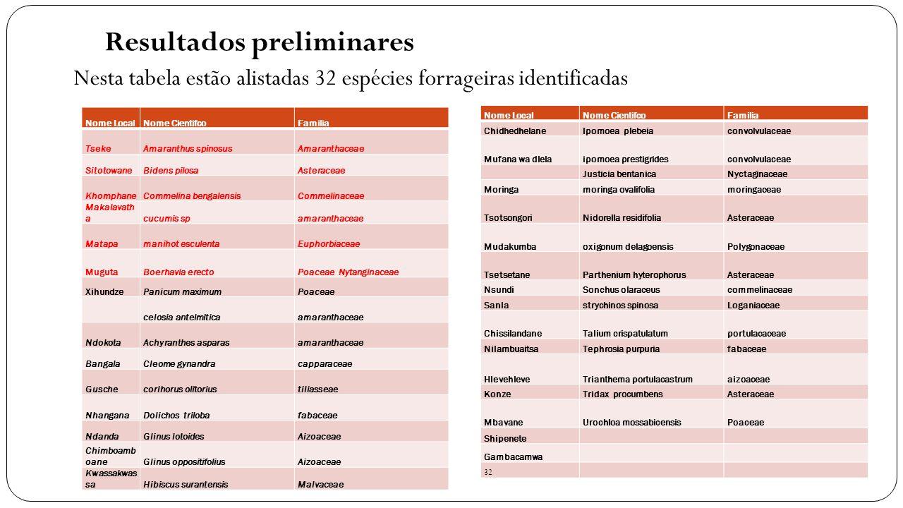 Resultados preliminares Nesta tabela estão alistadas 32 espécies forrageiras identificadas Nome LocalNome CientifcoFamilia TsekeAmaranthus spinosusAma