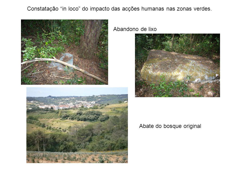 Abandono de lixo Abate do bosque original