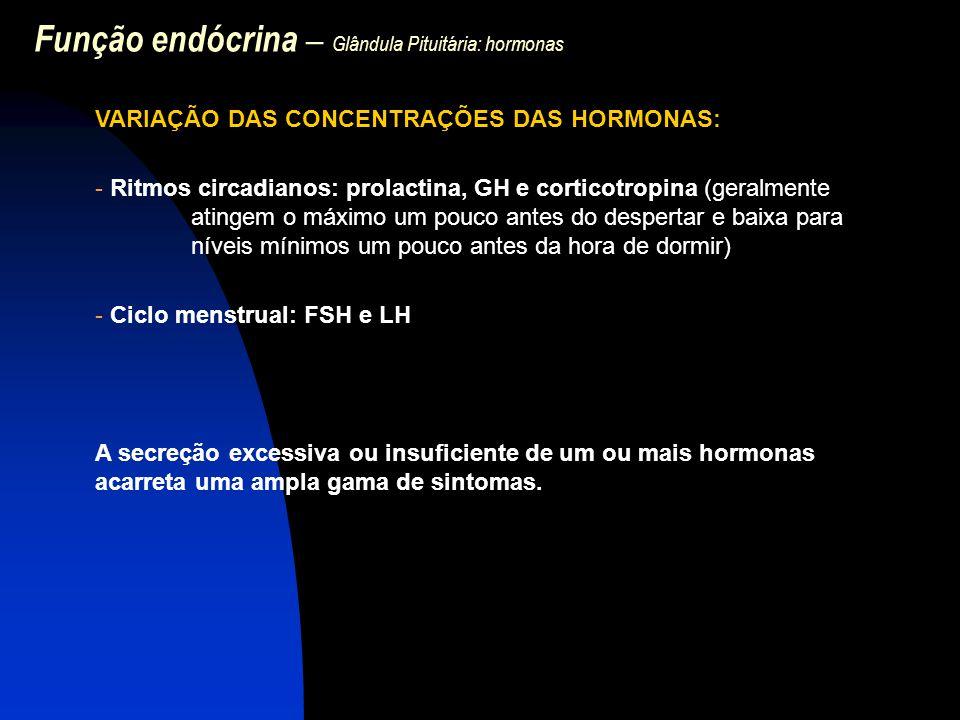 Função endócrina – Glândula Pituitária: hormonas VARIAÇÃO DAS CONCENTRAÇÕES DAS HORMONAS: - Ritmos circadianos: prolactina, GH e corticotropina (geral