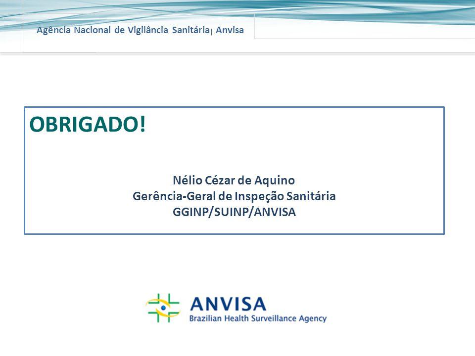 Agência Nacional de Vigilância Sanitária Anvisa OBRIGADO! Nélio Cézar de Aquino Gerência-Geral de Inspeção Sanitária GGINP/SUINP/ANVISA