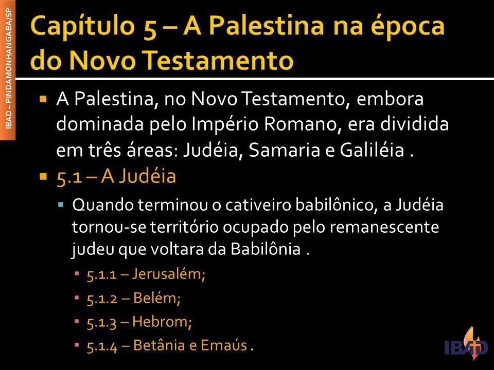 IBAD – PINDAMONHANGABA/SP  A Palestina, no Novo Testamento, embora dominada pelo Império Romano, era dividida em três áreas: Judéia, Samaria e Galiléia.