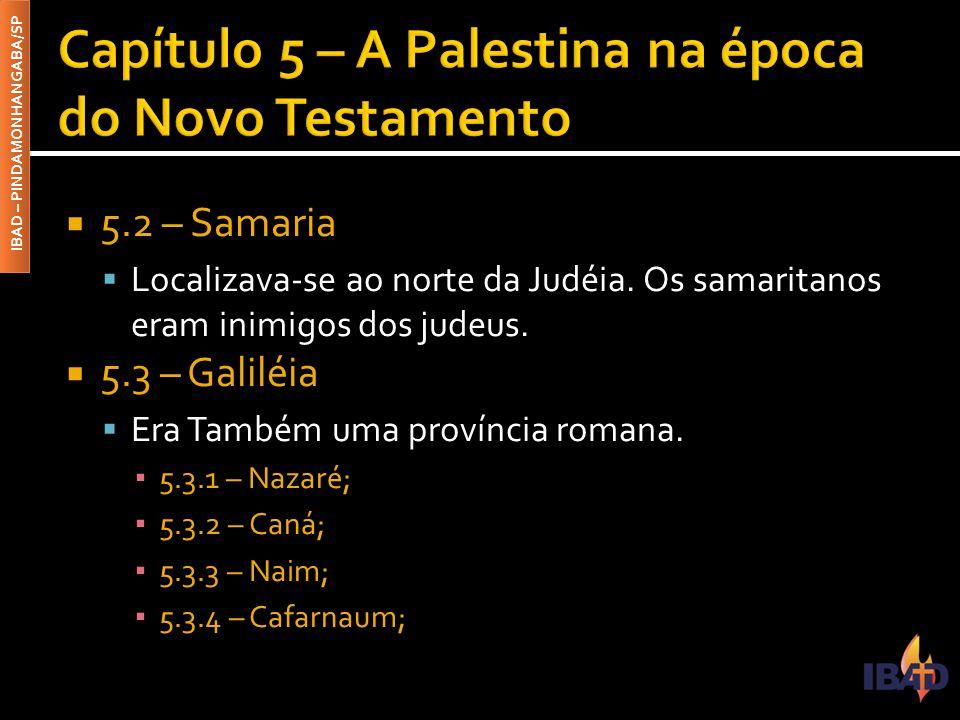 IBAD – PINDAMONHANGABA/SP  5.2 – Samaria  Localizava-se ao norte da Judéia.