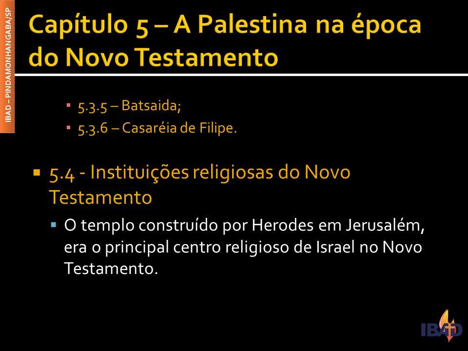 IBAD – PINDAMONHANGABA/SP ▪ 5.3.5 – Batsaida; ▪ 5.3.6 – Casaréia de Filipe.