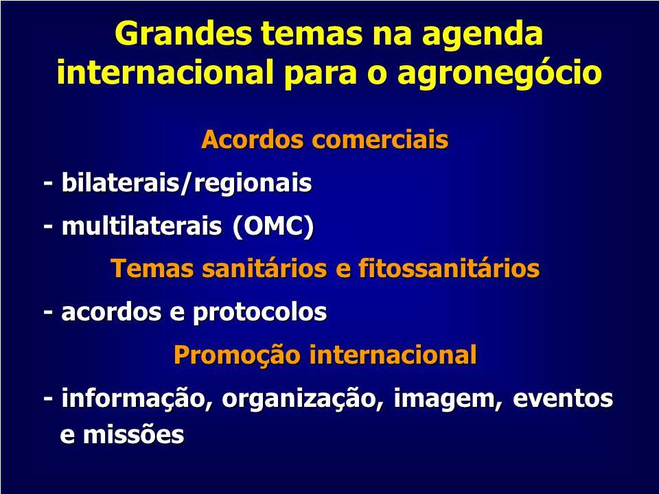 Grandes temas na agenda internacional para o agronegócio Acordos comerciais - bilaterais/regionais - bilaterais/regionais - multilaterais (OMC) - mult