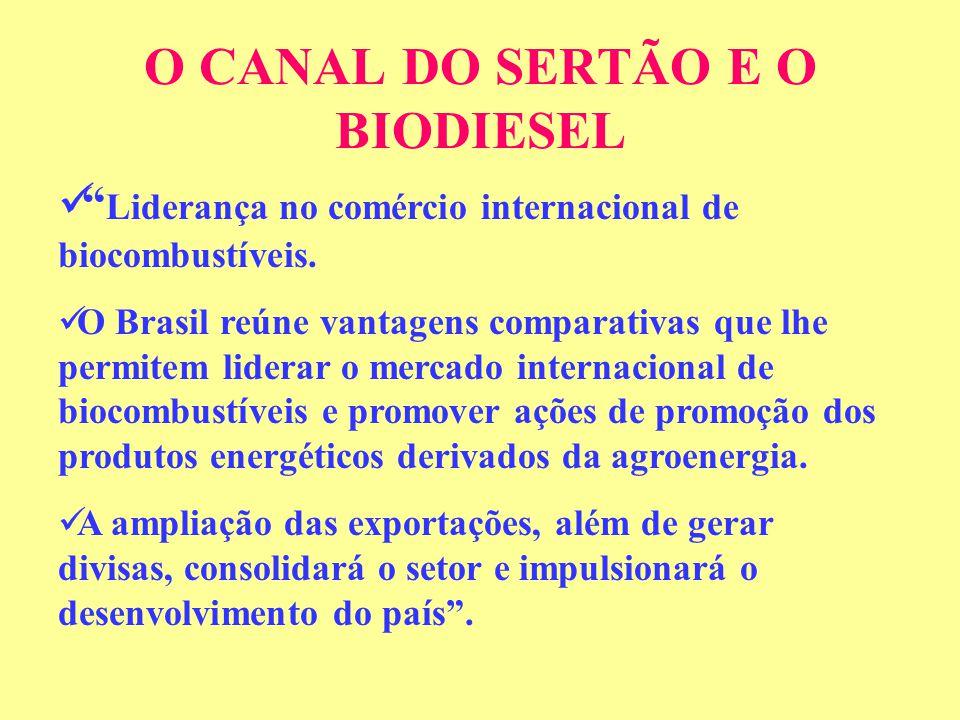 O CANAL DO SERTÃO E O BIODIESEL Liderança no comércio internacional de biocombustíveis.
