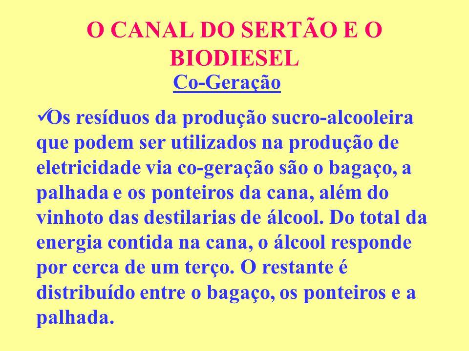 O CANAL DO SERTÃO E O BIODIESEL Co-Geração Os resíduos da produção sucro-alcooleira que podem ser utilizados na produção de eletricidade via co-geração são o bagaço, a palhada e os ponteiros da cana, além do vinhoto das destilarias de álcool.