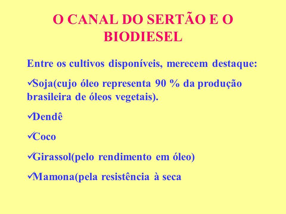 O CANAL DO SERTÃO E O BIODIESEL Entre os cultivos disponíveis, merecem destaque: Soja(cujo óleo representa 90 % da produção brasileira de óleos vegetais).