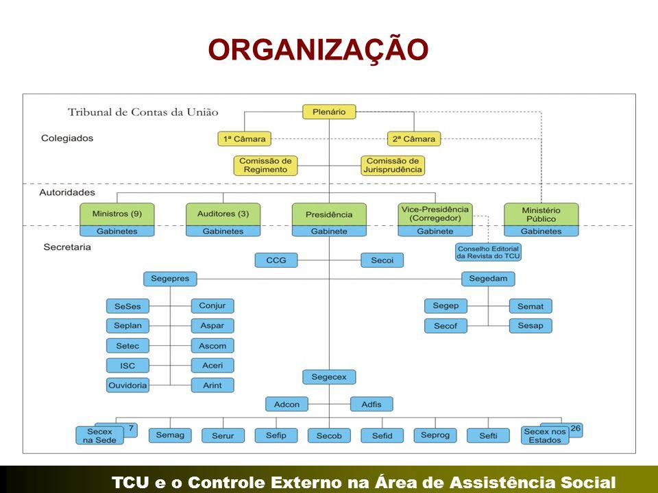 TCU e o Controle Externo na Área de Assistência Social ORGANIZAÇÃO