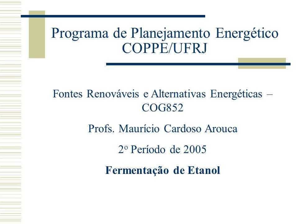 Programa de Planejamento Energético COPPE/UFRJ Fontes Renováveis e Alternativas Energéticas – COG852 Profs. Maurício Cardoso Arouca 2 o Período de 200