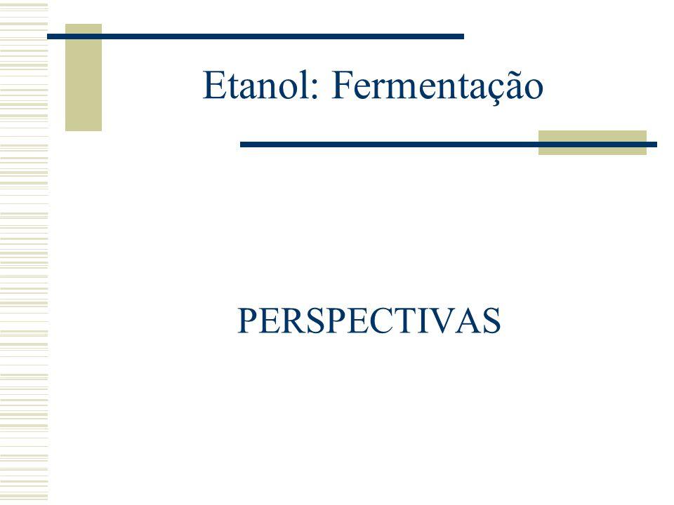 Etanol: Fermentação PERSPECTIVAS