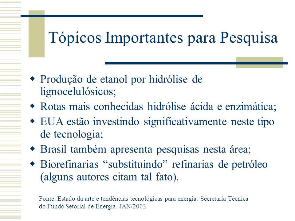 Tópicos Importantes para Pesquisa  Produção de etanol por hidrólise de lignocelulósicos;  Rotas mais conhecidas hidrólise ácida e enzimática;  EUA