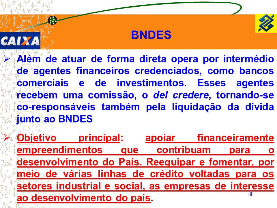 80  Além de atuar de forma direta opera por intermédio de agentes financeiros credenciados, como bancos comerciais e de investimentos. Esses agentes