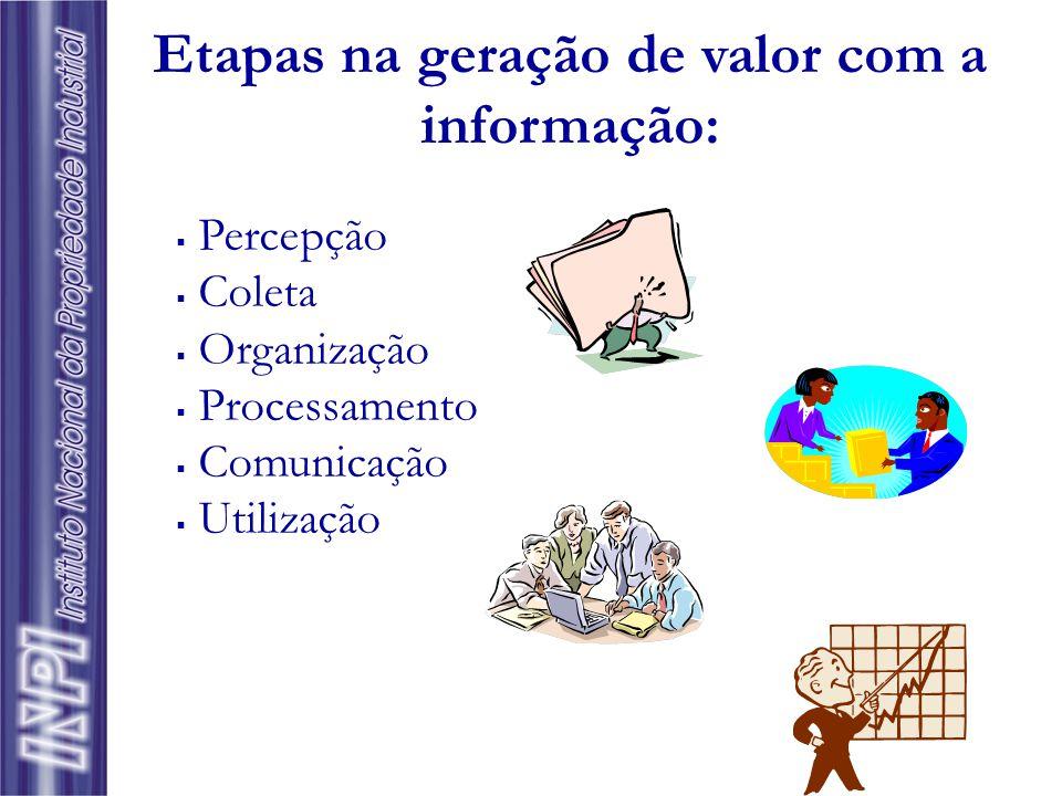  Fundamental para a operacionalização e como recurso estratégico das empresas  Bem intangível ► geração de valor (bens tangíveis)  Informação = cap