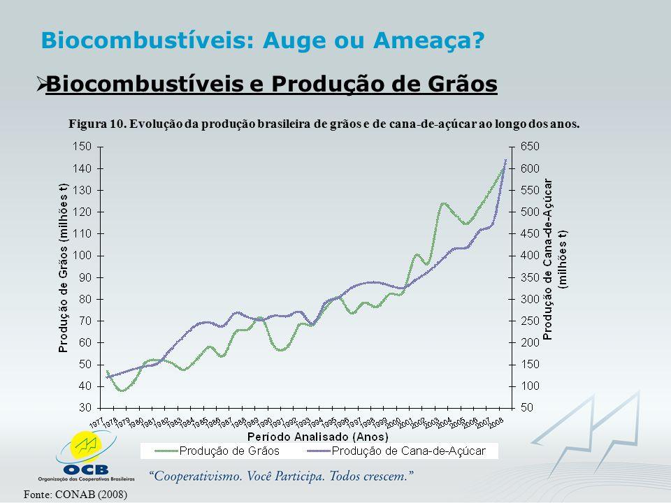  Biocombustíveis e Produção de Grãos Fonte: CONAB (2008) Figura 10. Evolução da produção brasileira de grãos e de cana-de-açúcar ao longo dos anos. B