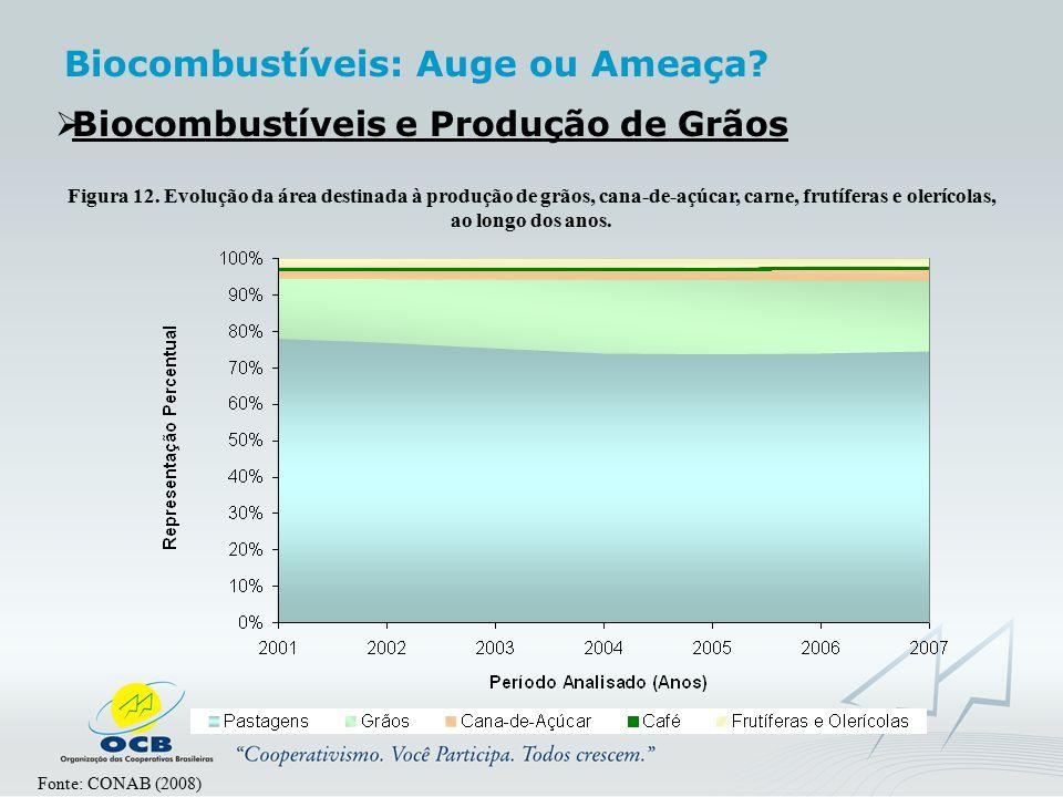  Biocombustíveis e Produção de Grãos Fonte: CONAB (2008) Figura 12. Evolução da área destinada à produção de grãos, cana-de-açúcar, carne, frutíferas