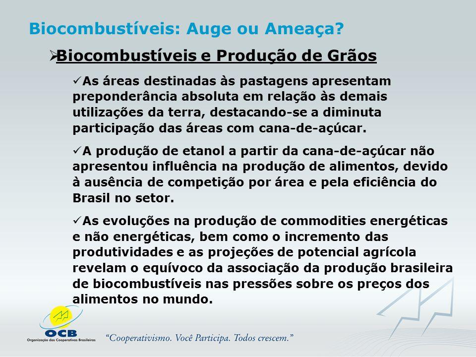  Biocombustíveis e Produção de Grãos As áreas destinadas às pastagens apresentam preponderância absoluta em relação às demais utilizações da terra, d