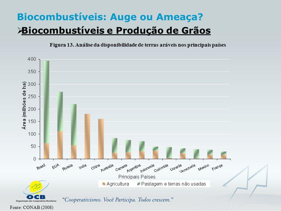  Biocombustíveis e Produção de Grãos Fonte: CONAB (2008) Figura 13. Análise da disponibilidade de terras aráveis nos principais países Biocombustívei