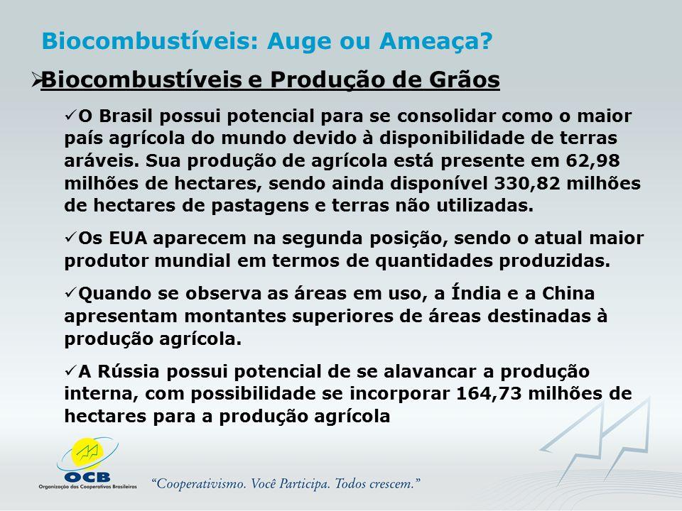  Biocombustíveis e Produção de Grãos O Brasil possui potencial para se consolidar como o maior país agrícola do mundo devido à disponibilidade de ter