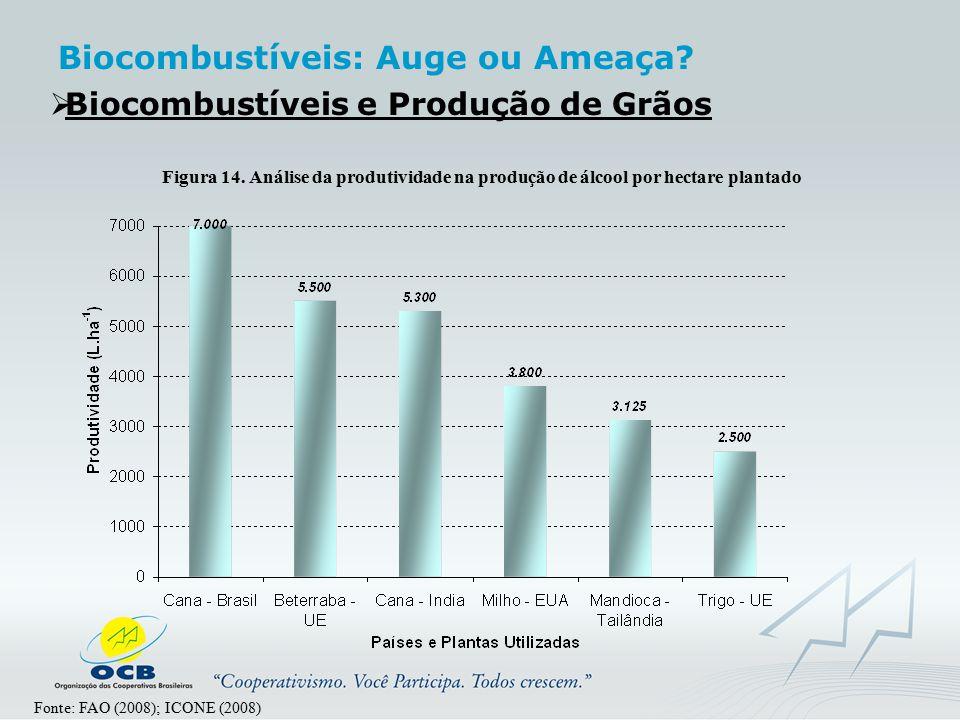  Biocombustíveis e Produção de Grãos Fonte: FAO (2008); ICONE (2008) Figura 14. Análise da produtividade na produção de álcool por hectare plantado B