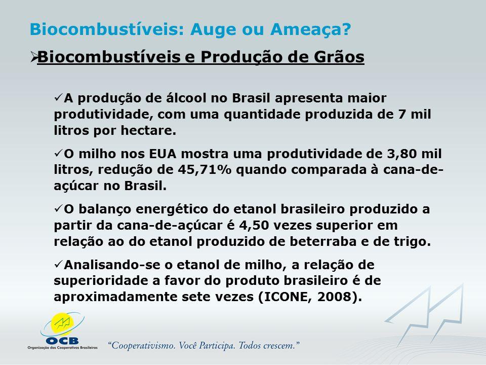  Biocombustíveis e Produção de Grãos A produção de álcool no Brasil apresenta maior produtividade, com uma quantidade produzida de 7 mil litros por h