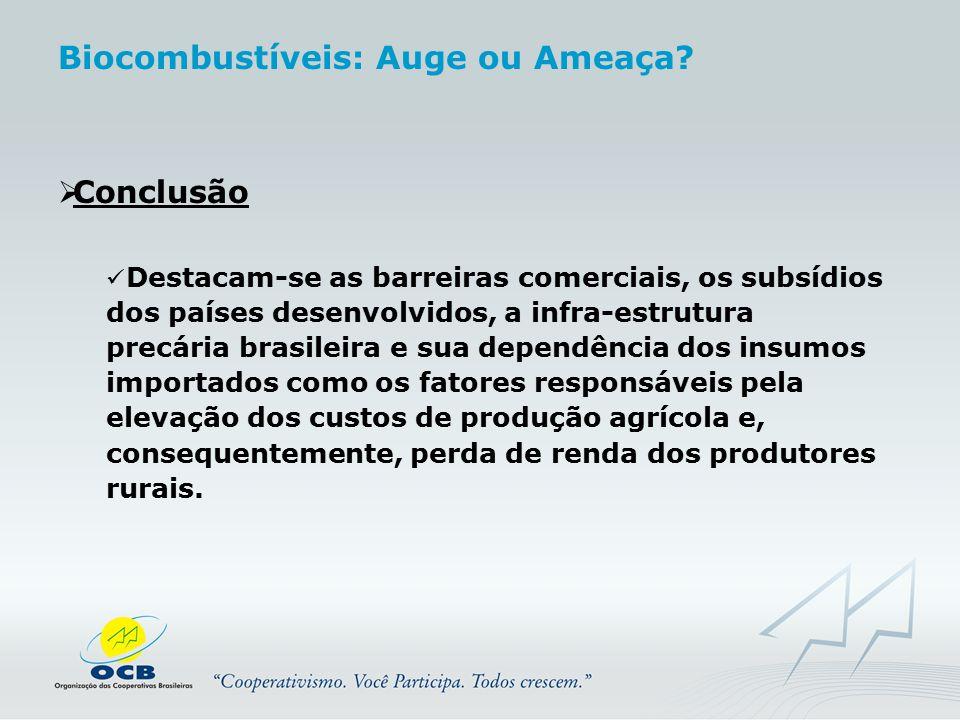  Conclusão Destacam-se as barreiras comerciais, os subsídios dos países desenvolvidos, a infra-estrutura precária brasileira e sua dependência dos in