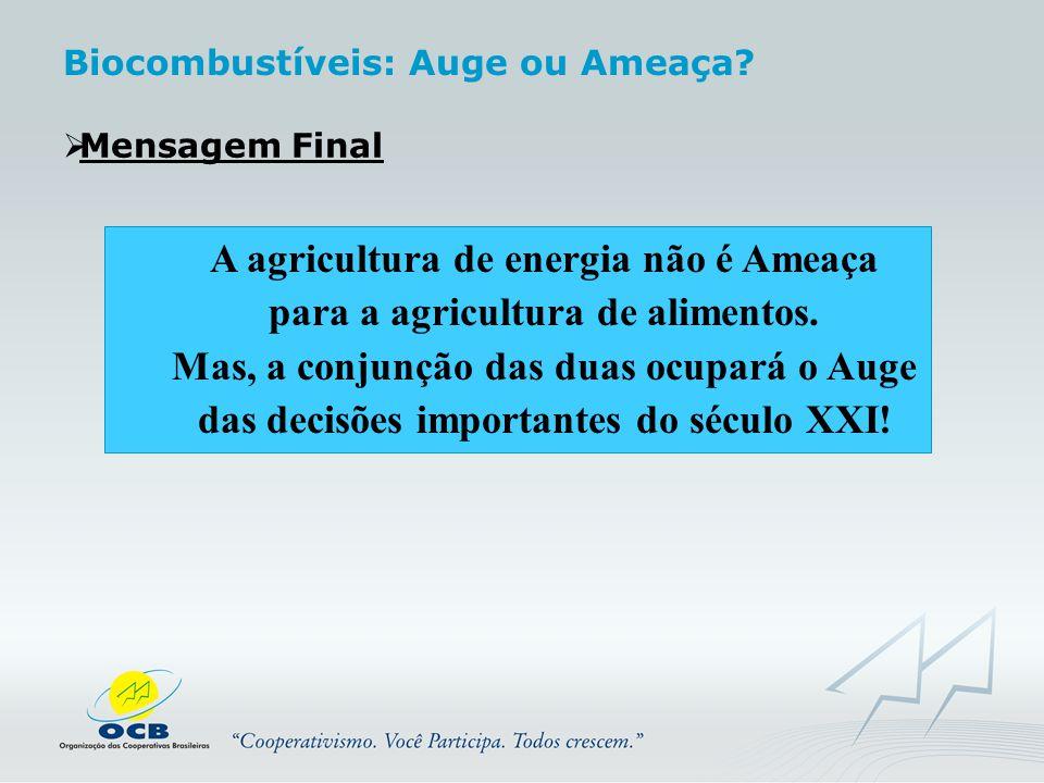  Mensagem Final A agricultura de energia não é Ameaça para a agricultura de alimentos. Mas, a conjunção das duas ocupará o Auge das decisões importan