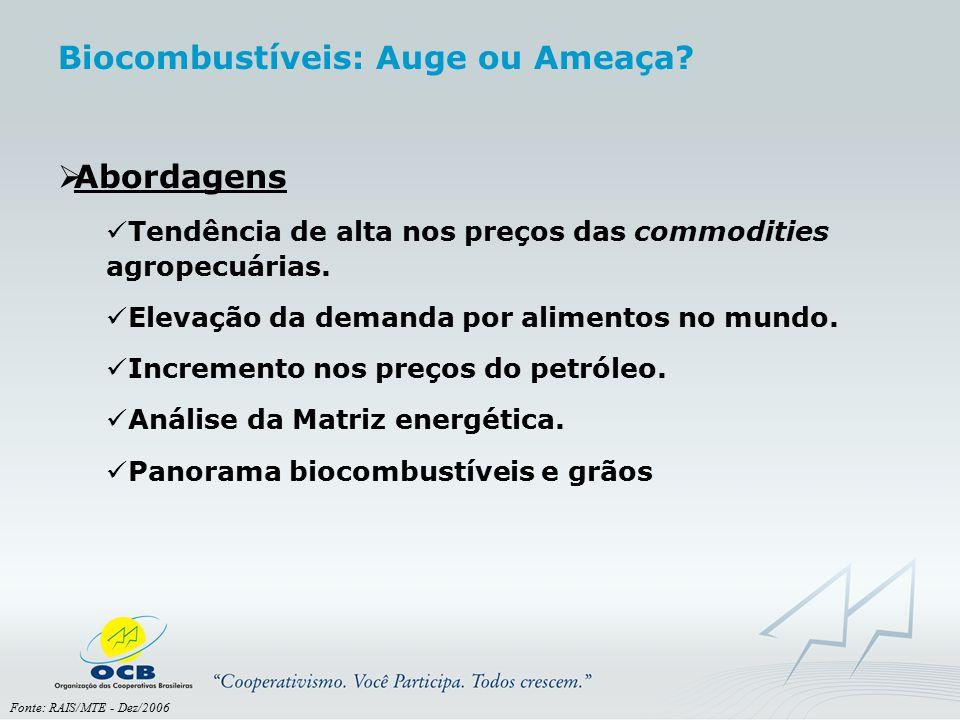 Fonte: RAIS/MTE - Dez/2006 Biocombustíveis: Auge ou Ameaça?  Abordagens Tendência de alta nos preços das commodities agropecuárias. Elevação da deman