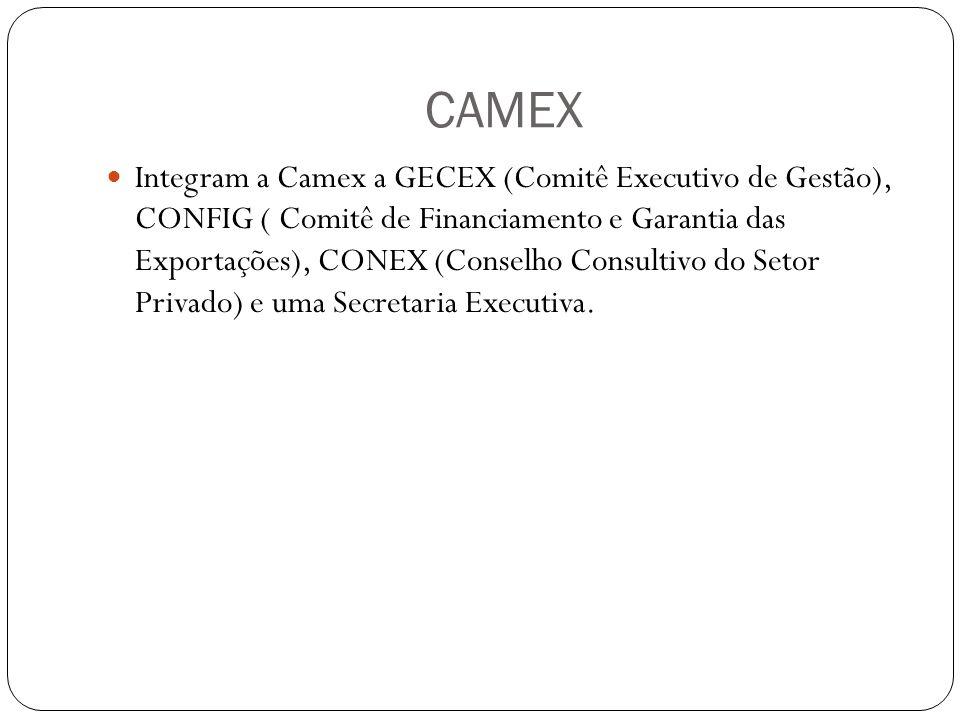 CAMEX Integram a Camex a GECEX (Comitê Executivo de Gestão), CONFIG ( Comitê de Financiamento e Garantia das Exportações), CONEX (Conselho Consultivo do Setor Privado) e uma Secretaria Executiva.