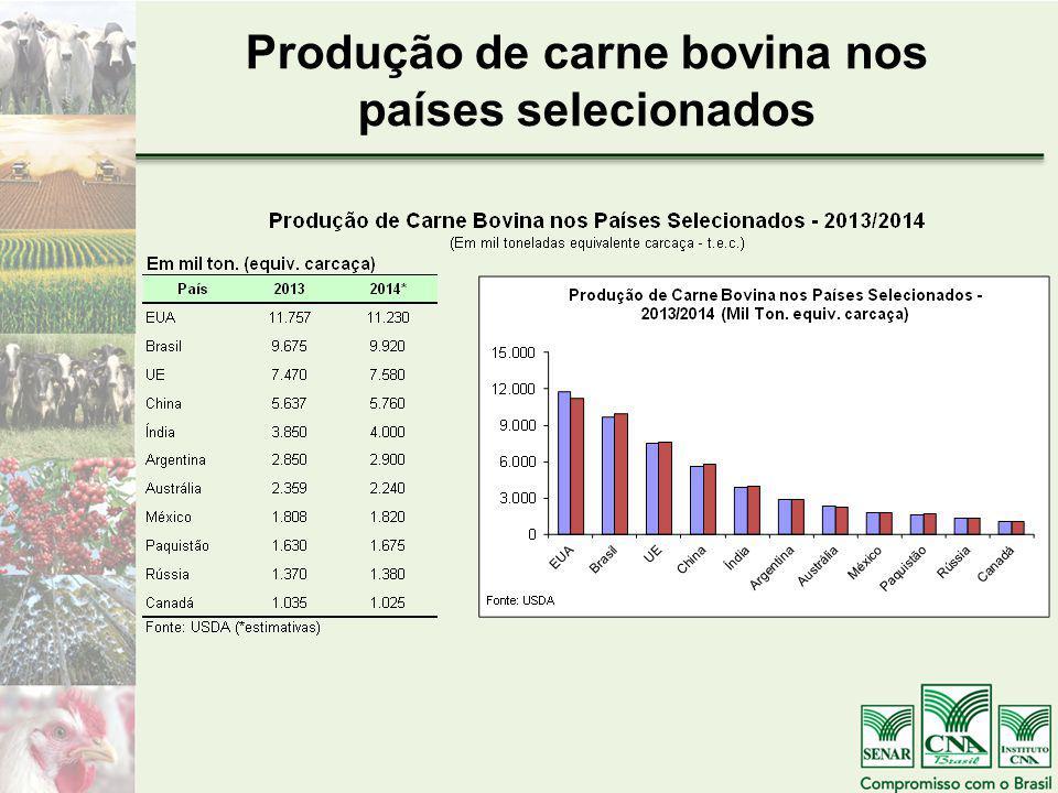 Produção de carne bovina nos países selecionados