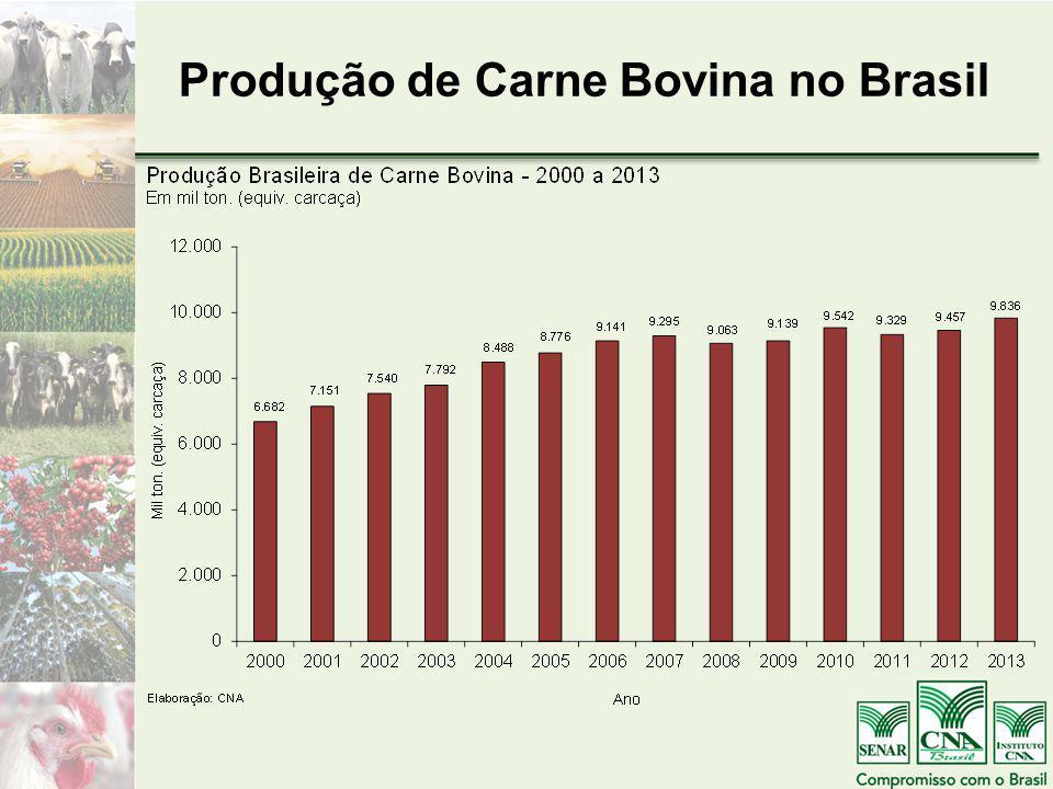 Produção de Carne Bovina no Brasil