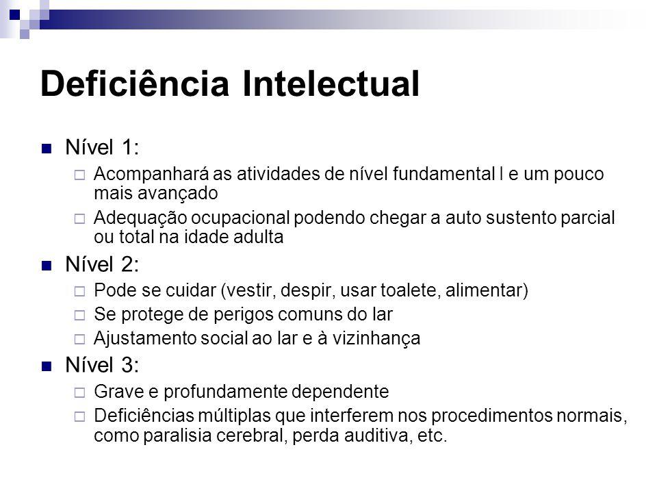 Deficiência Intelectual Nível 1:  Acompanhará as atividades de nível fundamental I e um pouco mais avançado  Adequação ocupacional podendo chegar a