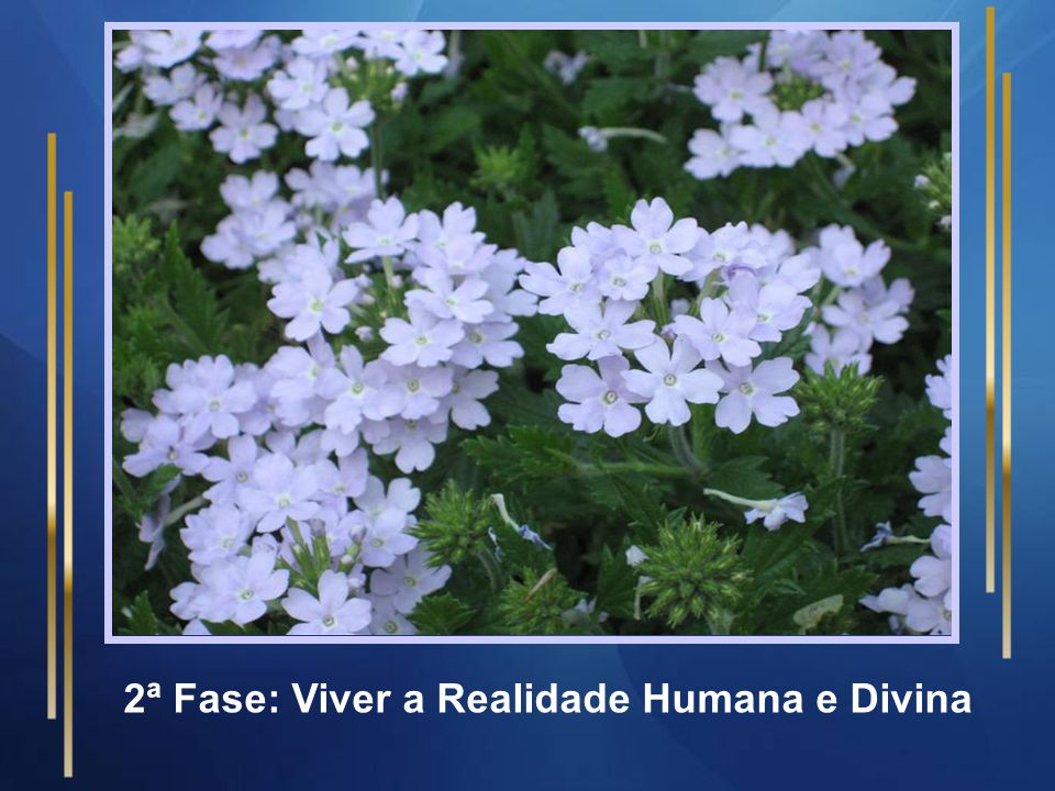 Os retiros acontecem em 06 fases 1ª Fase: Conhecer a Realidade Humana e Divina