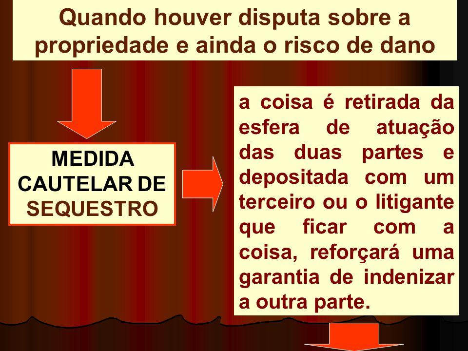 Devem estar presentes os dois requisitos clássicos das MEDIDAS CAUTELARES.