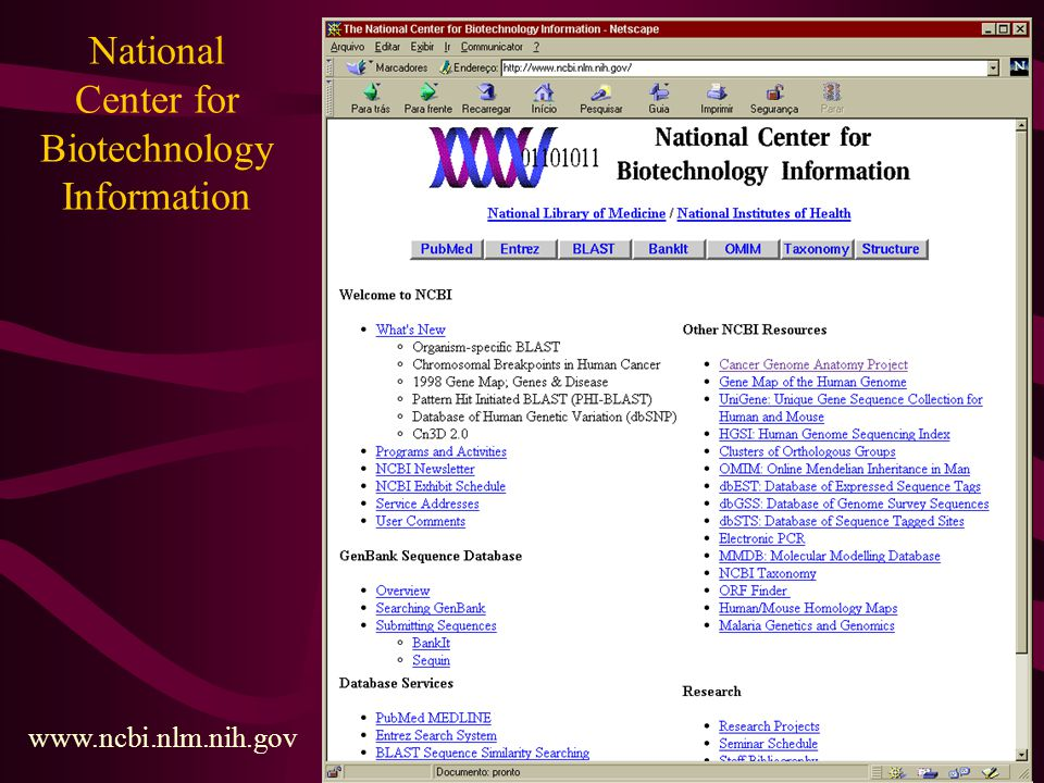 National Center for Biotechnology Information www.ncbi.nlm.nih.gov