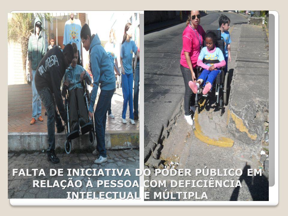 FALTA DE INICIATIVA DO PODER PÚBLICO EM RELAÇÃO À PESSOA COM DEFICIÊNCIA INTELECTUAL E MÚLTIPLA