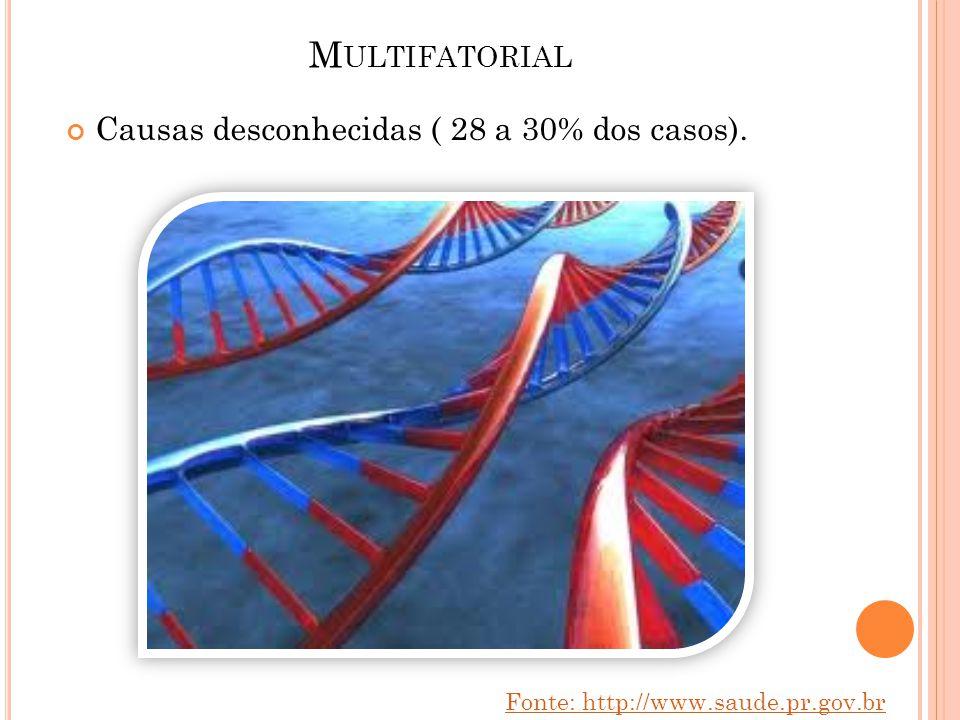 M ULTIFATORIAL Causas desconhecidas ( 28 a 30% dos casos). Fonte: http://www.saude.pr.gov.br