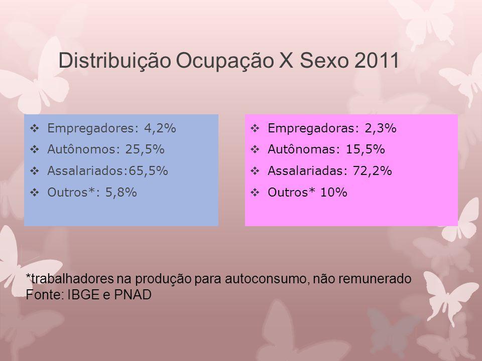 Distribuição Ocupação X Sexo 2011  Empregadores: 4,2%  Autônomos: 25,5%  Assalariados:65,5%  Outros*: 5,8%  Empregadoras: 2,3%  Autônomas: 15,5%