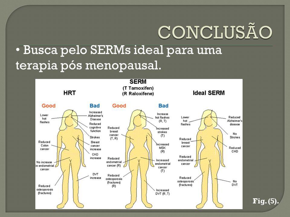 Busca pelo SERMs ideal para uma terapia pós menopausal. Fig. (5).