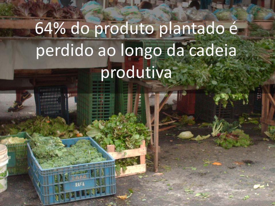 64% do produto plantado é perdido ao longo da cadeia produtiva