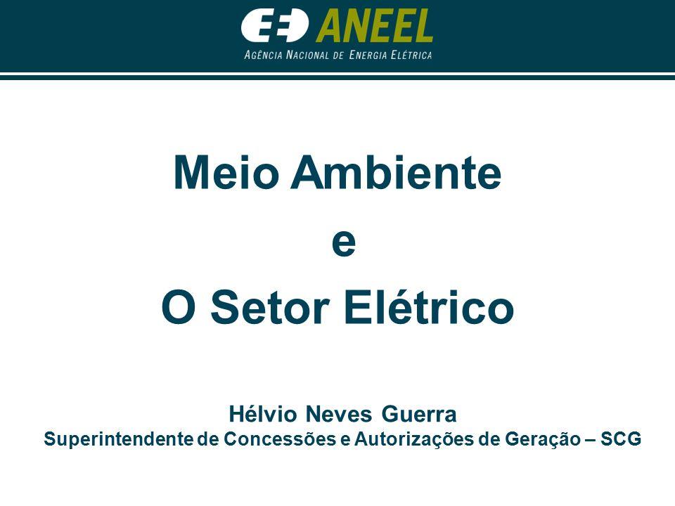 Meio Ambiente e o Setor Elétrico A ENERGIA NÃO É UM FIM EM SI MESMO.